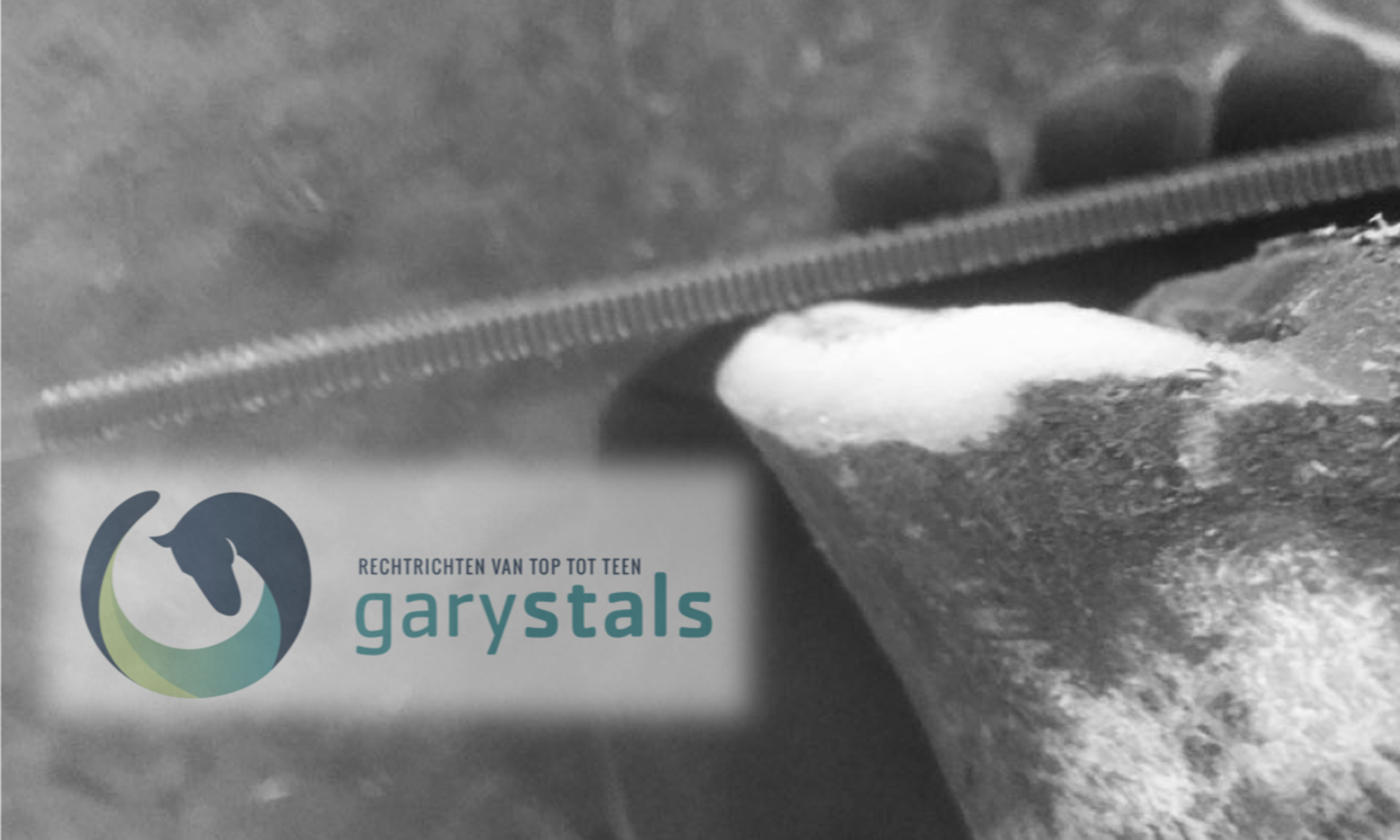 Gary Stals